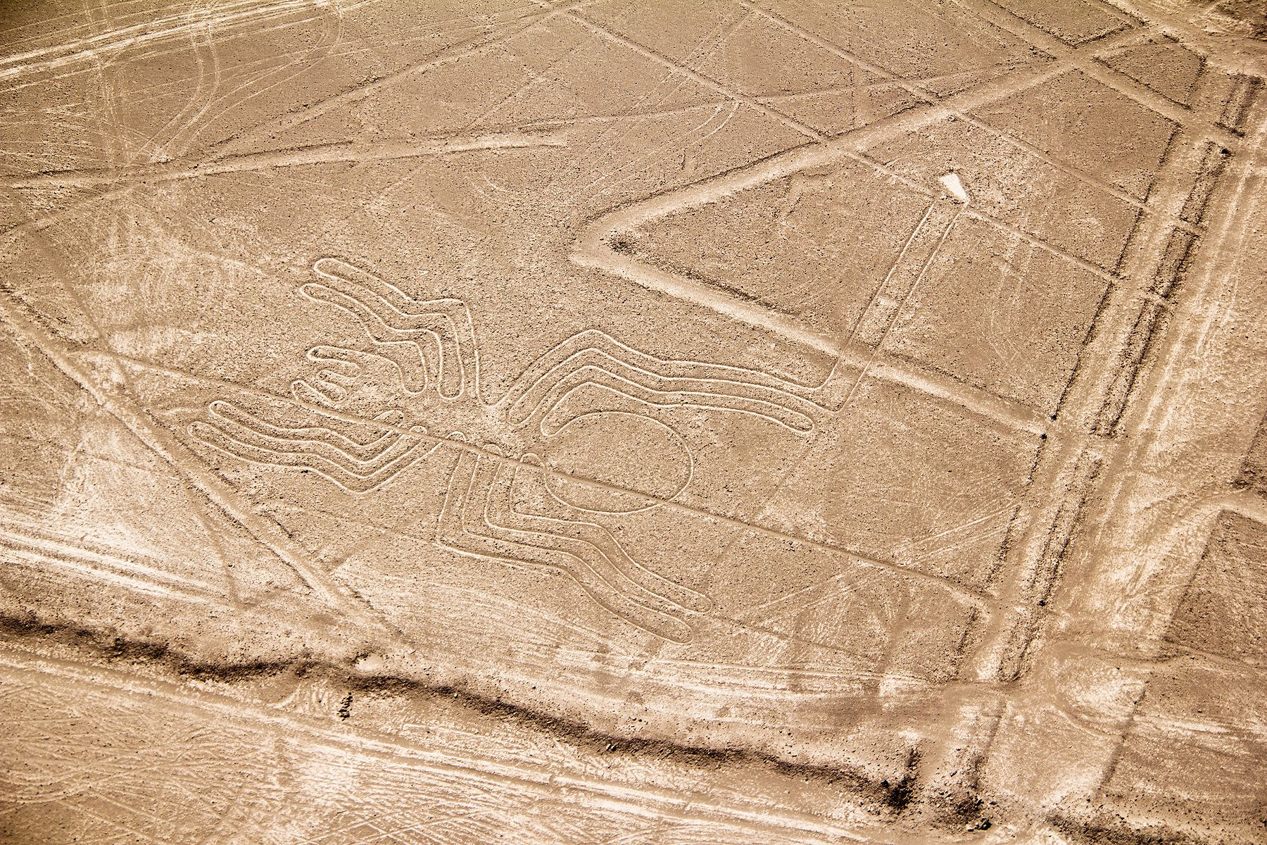 An aerial view of the Nazca Lines