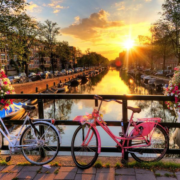 All About Amsterdam