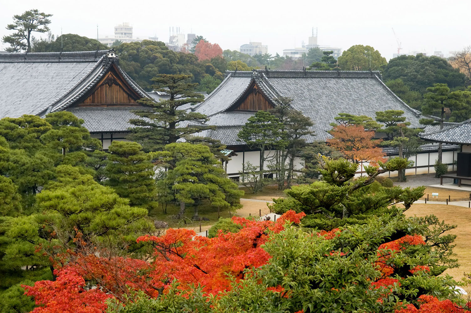 Nijo Castle in the fall with colorful leaves in the foreground