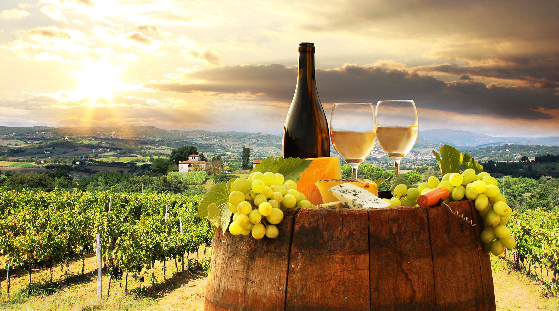Ten Wine Facts To Impress Your Dinner Guests