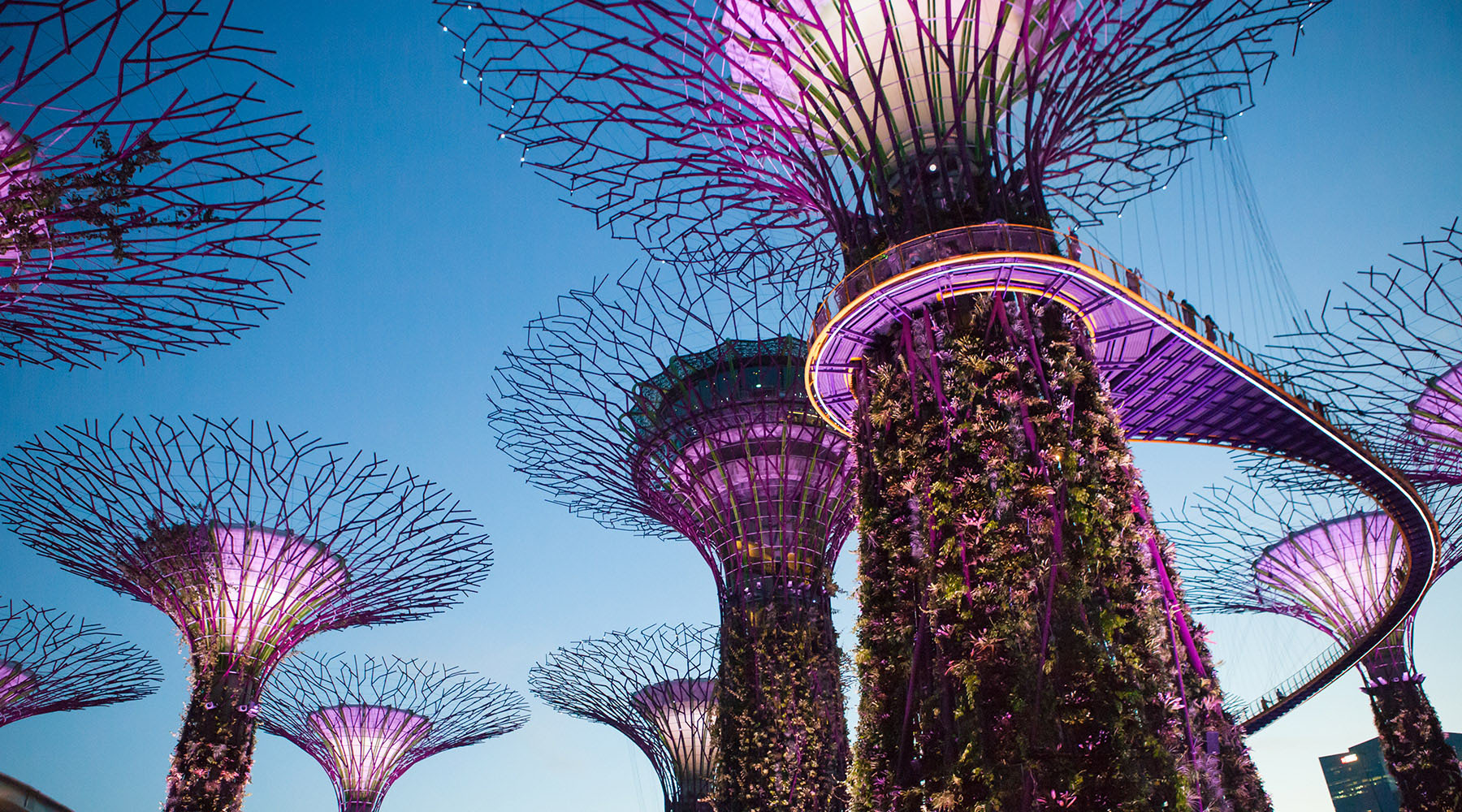 The New Singapore