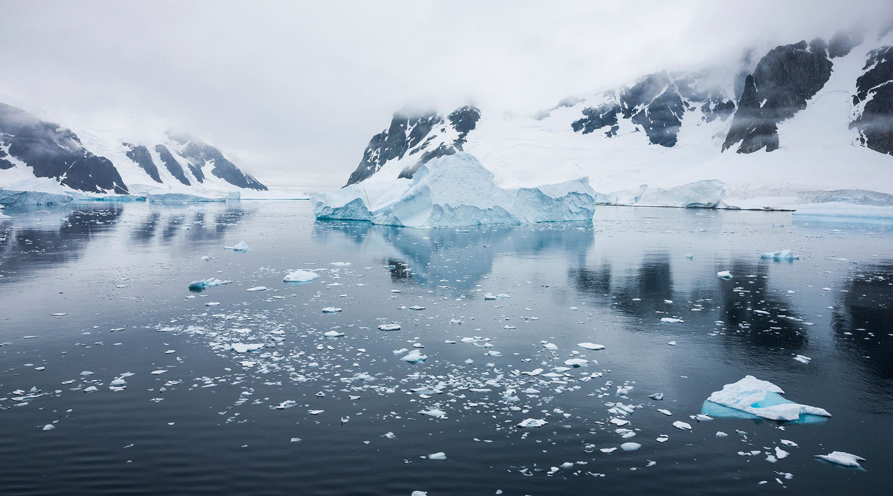 Antarctic Sound/Peninsula
