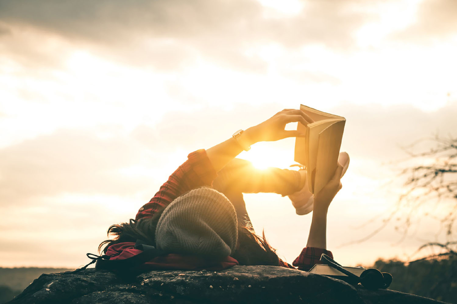 Woman reading book in sunshine