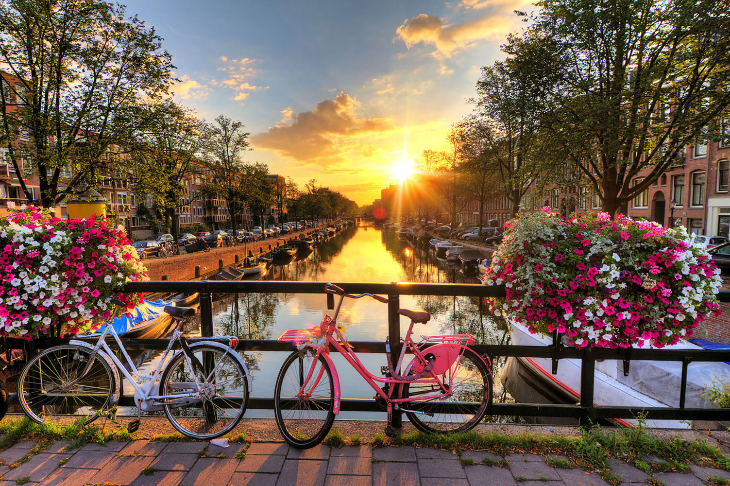 Seven Things to do in Amsterdam