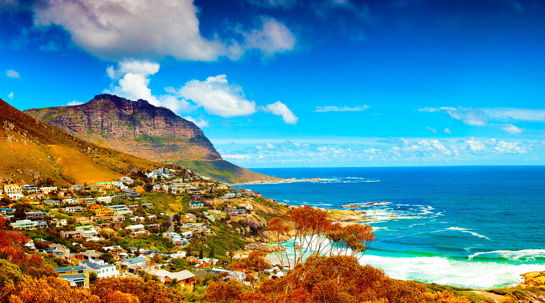 12-Night South Africa Intensive Voyage