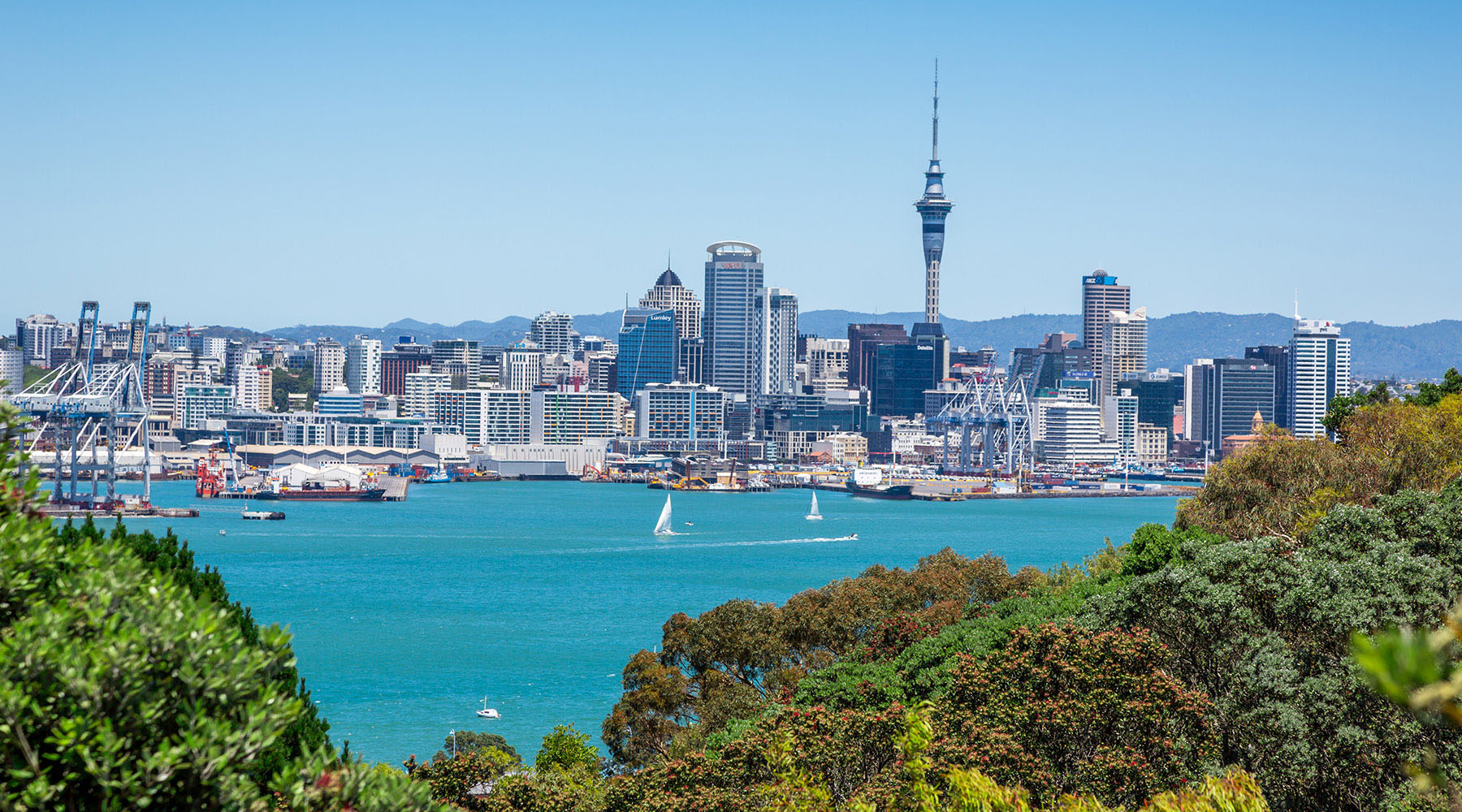 17-Night New Zealand & Australia Voyage