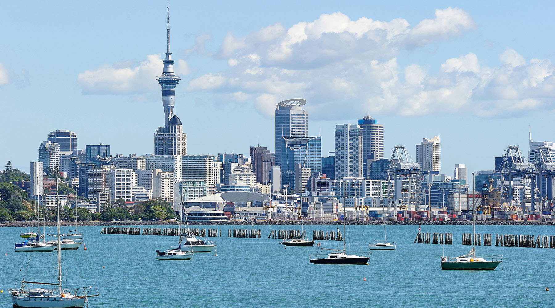 Auckland skyline from across a bay