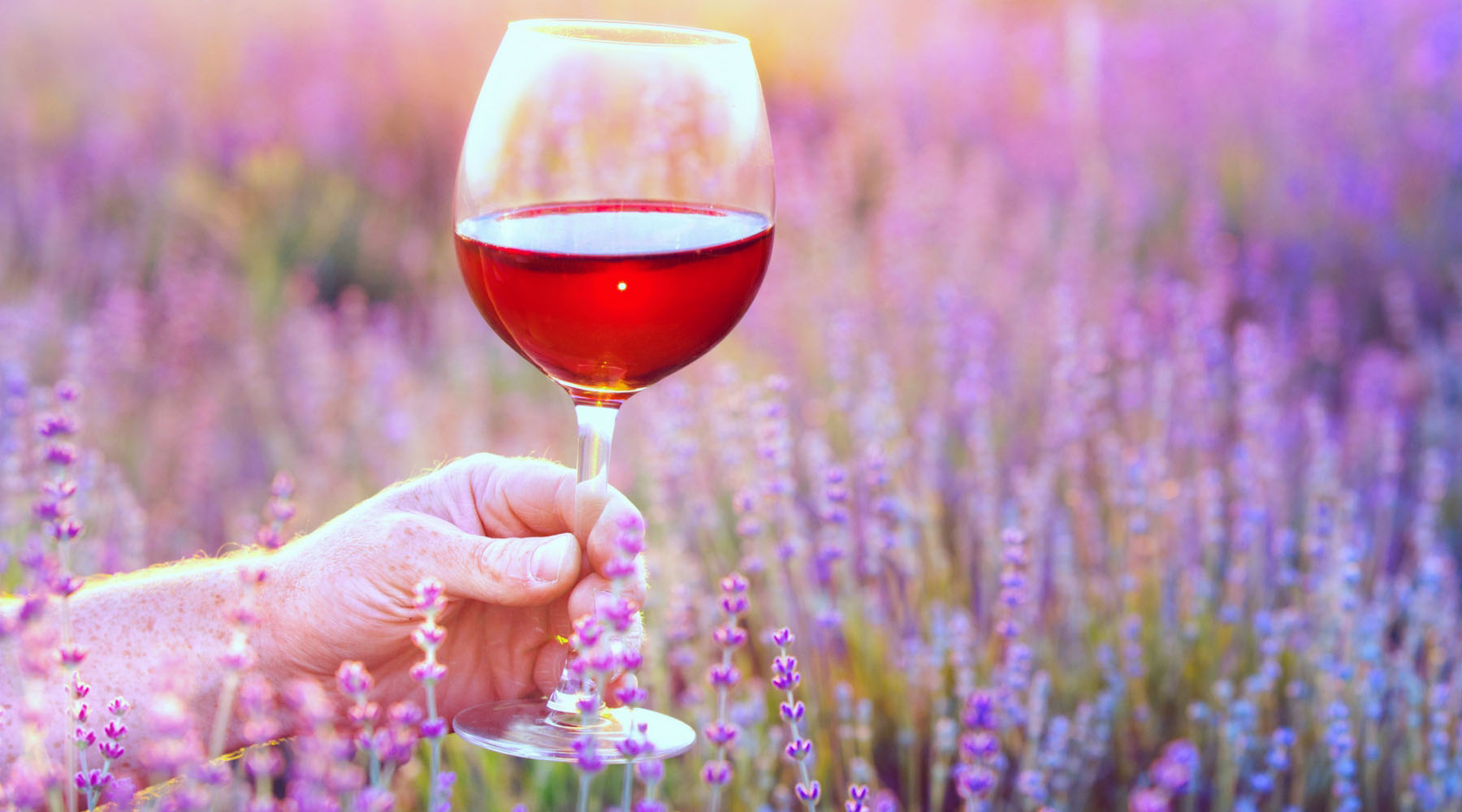 The Best Travel Destinations For Wine Lovers