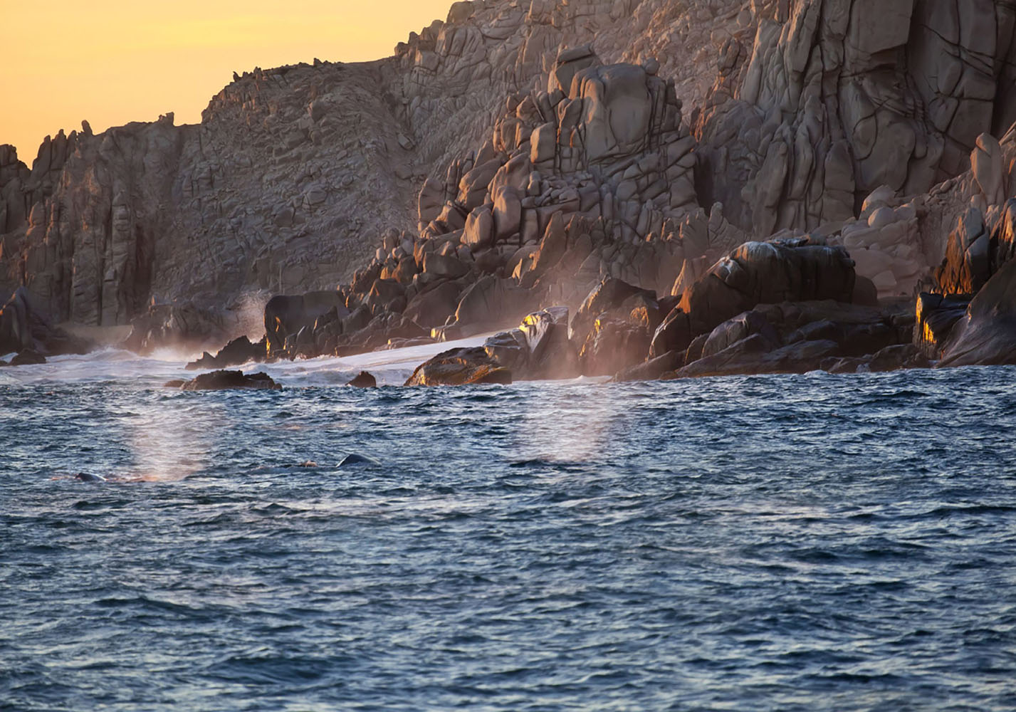 Go fishing or whale watching in Cabo San Lucas, Mexico and take in the beautiful coastal scenery.