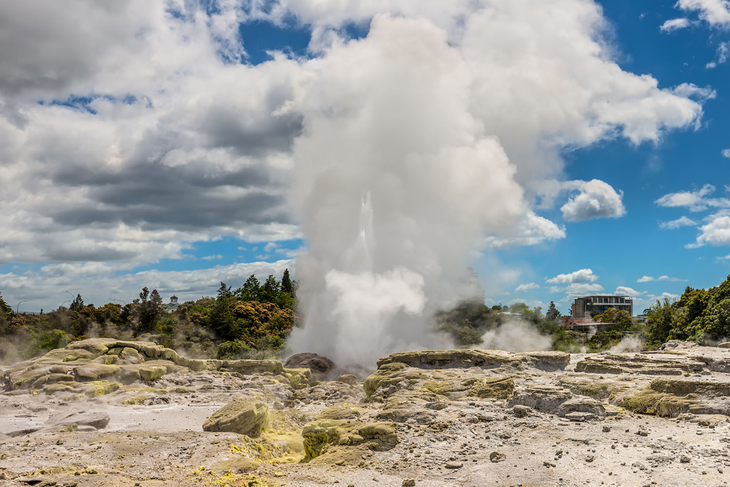 See the Pohutu Geyser when you visit Rotorua, New Zealand.