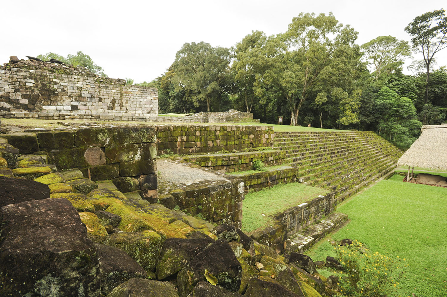 When calling on Santo Tomas de Castilla, Guatemala, you can visit the nearby Mayan ruins of Quiriguá.